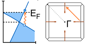 Uncovering electron-phonon scattering and phonon dynamics in type-I Weyl semimetals