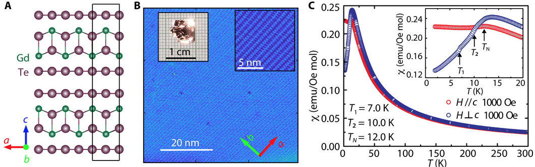 High mobility in a van der Waals layered antiferromagnetic metal