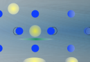 Evidence for Dominant Phonon-Electron Scattering in Weyl Semimetal WP2