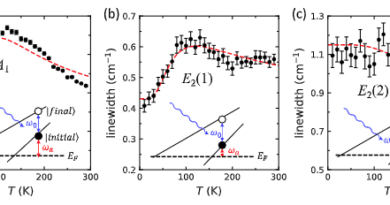 Evidence of a coupled electron-phonon liquid in NbGe2